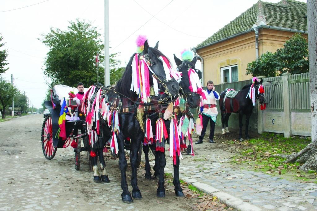 oameni-zaibar-bailesti 1