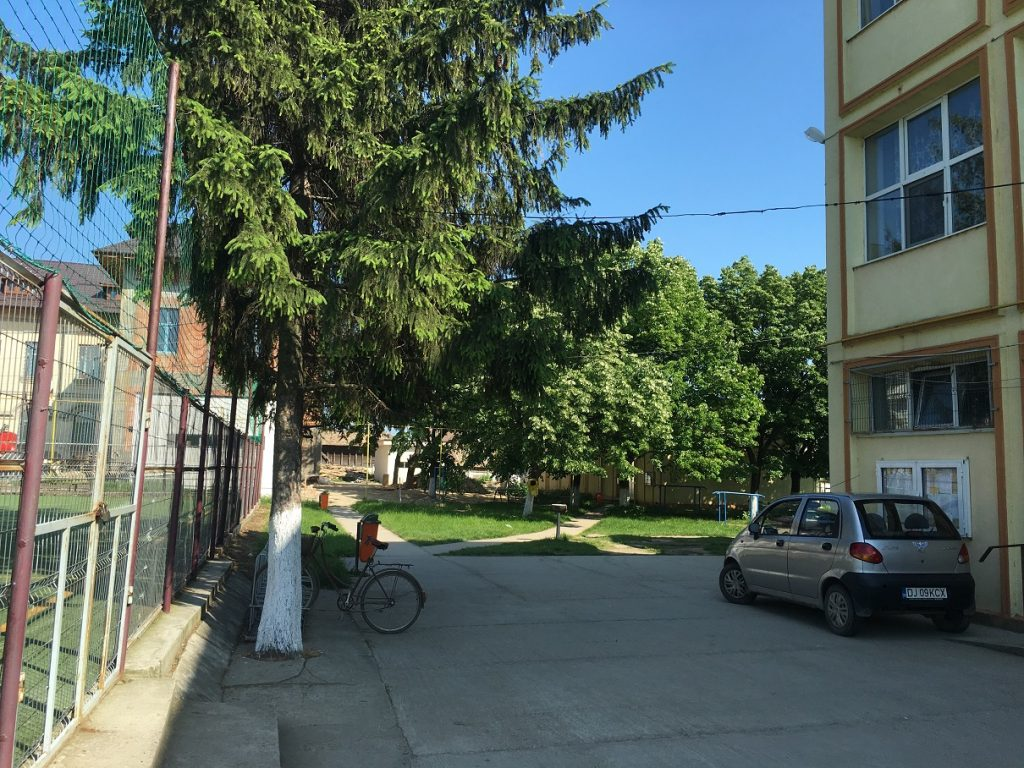 Liceul Mihai VIteazul Bailesti 1